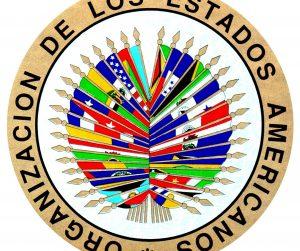 Observadores OEA: Informe preliminar